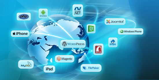 software-designing-company-meerut